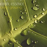 Herbal Essence - Natural Growing