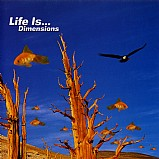 Various Artists - Life Is Dimensions