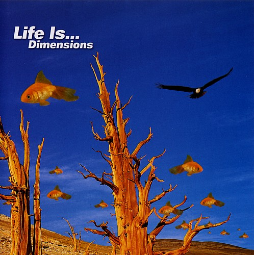 Various Artists - Life Is Dimensions: Front