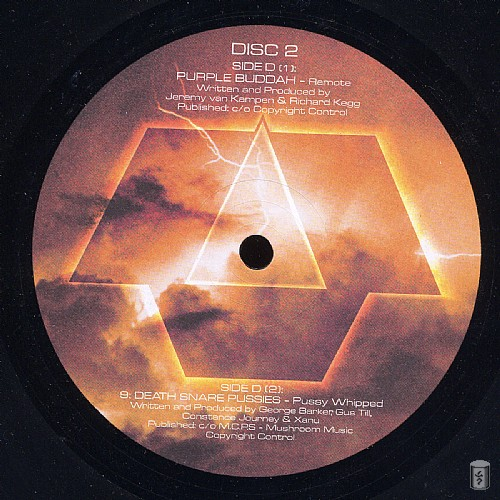 Various Artists - Fifth Flight - Maelstrom: Side D