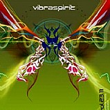 Various Artists - Vibraspirit 23.11