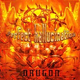 Drugon - Perfect Hallucination