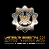 V.A - Labyrinth Essential 001
