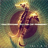 Various Artists - Future Sound of Ambient 1 & 2