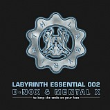 V.A - Labyrinth Essential 002