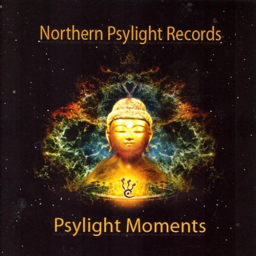 Various Artists - Psylight Moments: Front