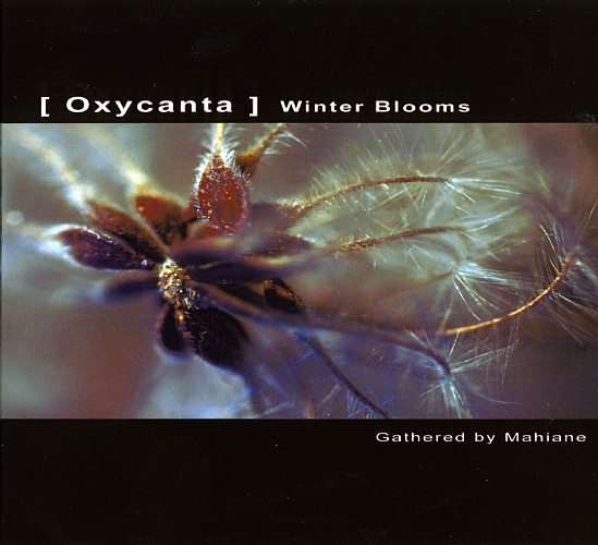 Various Artists - Oxycanta - Winter Blooms: Front