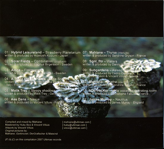 Various Artists - Oxycanta - Winter Blooms: Inside