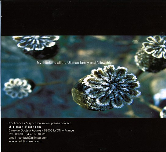 Various Artists - Oxycanta - Winter Blooms: Inside 3