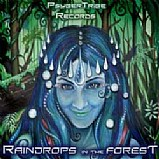 Various Artists - Raindrops In The Forest