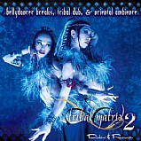 Various Artists - Tribal Matrix 2