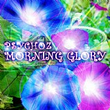 Psychoz - Morning Glory